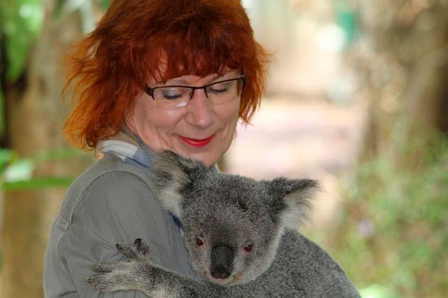 Koala y señora